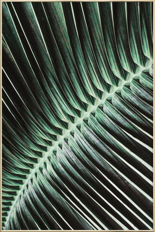 Curved Palm -Poster im Alurahmen