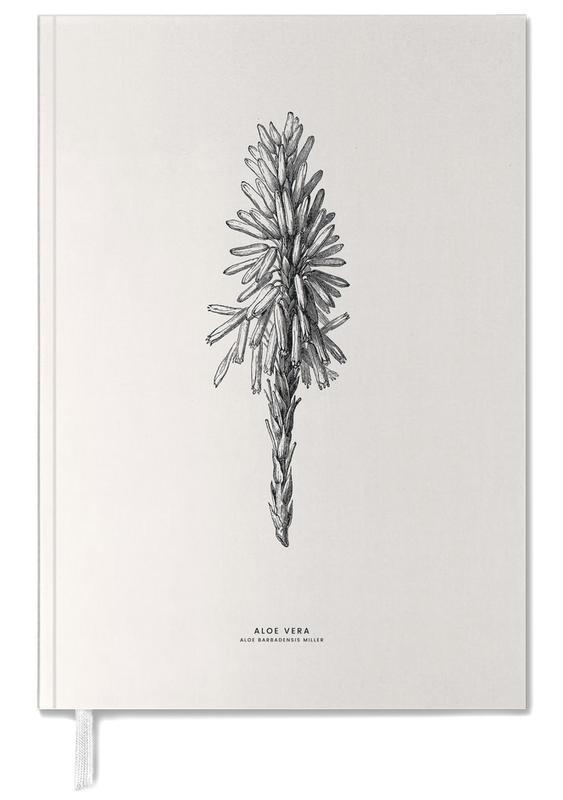 Cactussen, Bladeren en planten, Aloe Vera agenda