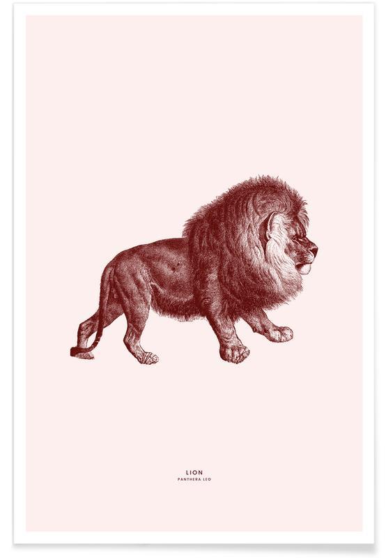 Løver, Lion II Plakat