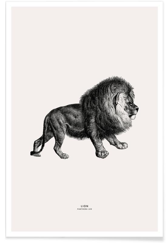 Lion Plakat