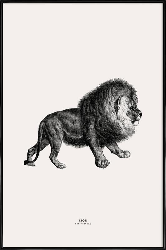 Lion ingelijste poster