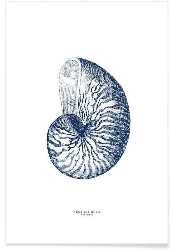 Nautilus Shell II poster