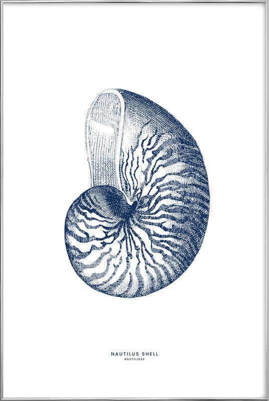 Nautilus Shell II -Poster im Alurahmen