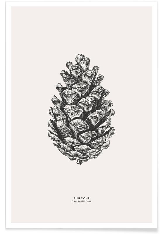 Noël, Feuilles & Plantes, Pinecone affiche