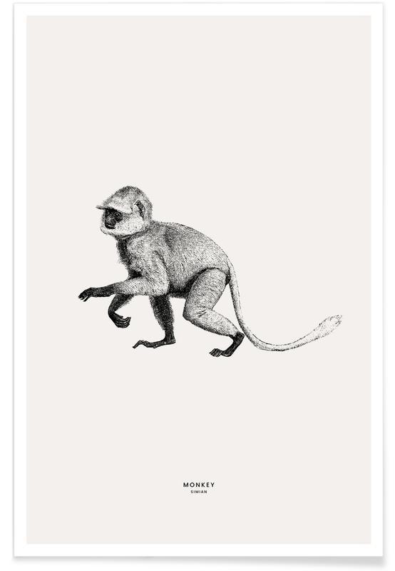 Art pour enfants, Singes, Monkey affiche