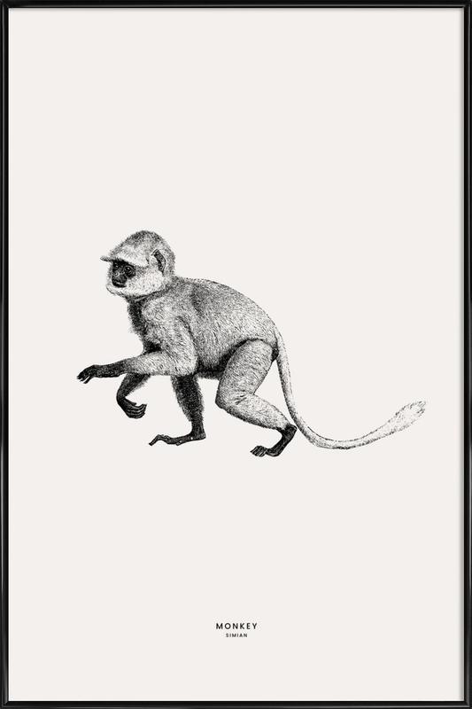 Monkey Poster i standardram
