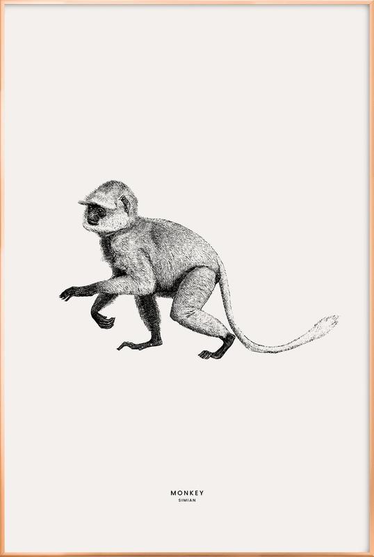 Monkey Poster i aluminiumram