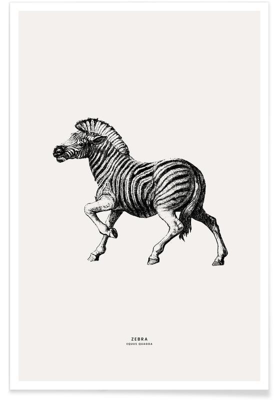 Zèbres, Art pour enfants, Zebra affiche