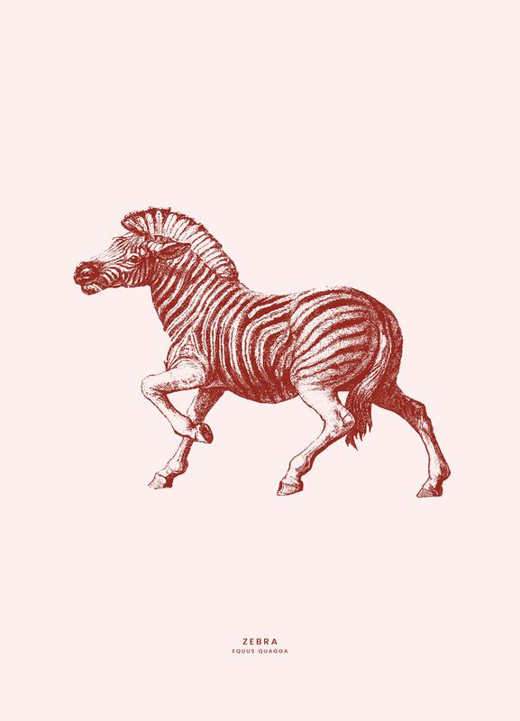 Zebra II toile