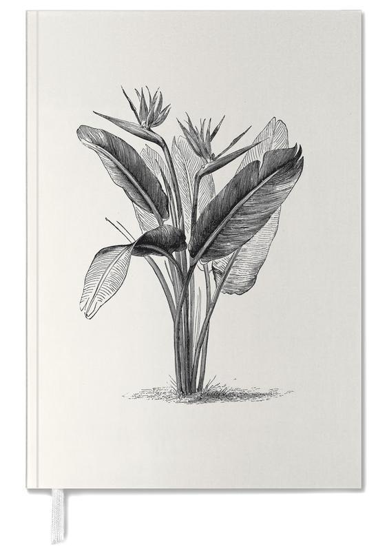 Crane Flower -Terminplaner