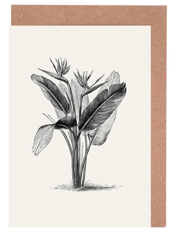 Crane Flower -Grußkarten-Set
