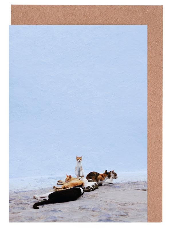 Katzen, Nap Guard -Grußkarten-Set