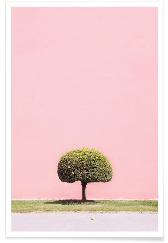 Trees, Orange Tree Poster