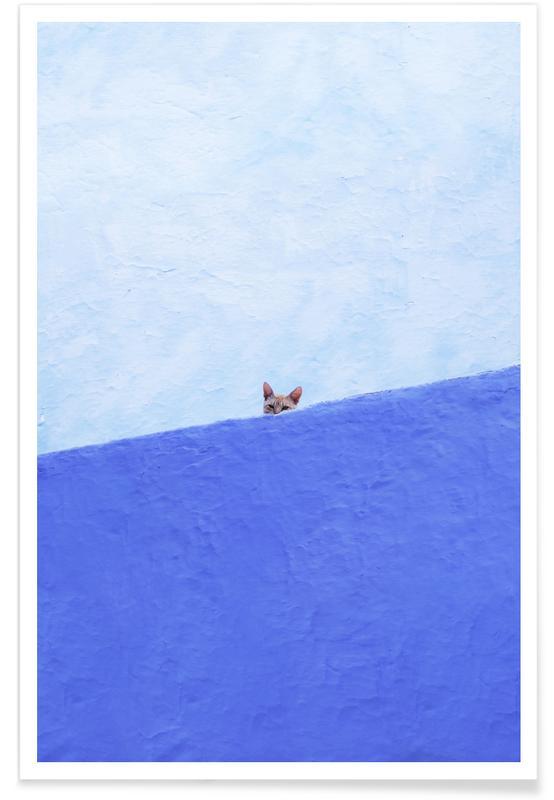 Katten, Spy Cat poster
