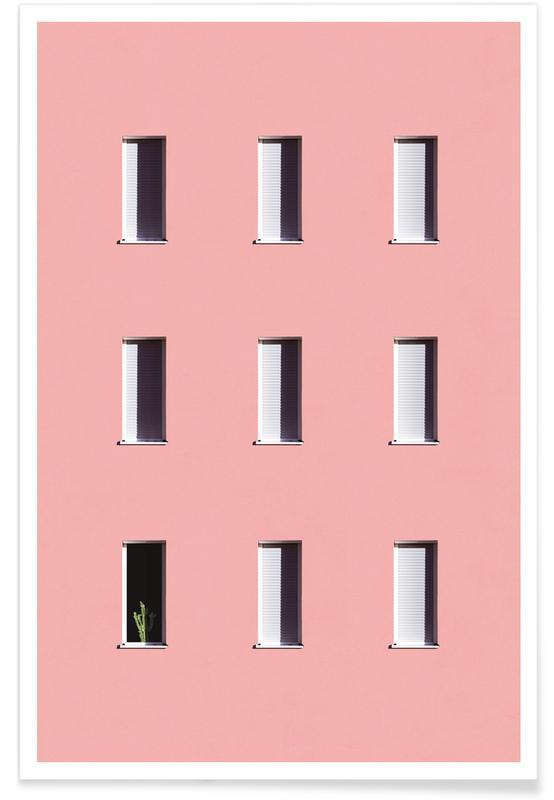 Architekturdetails, Kaktus, Sunbathing Cactus -Poster