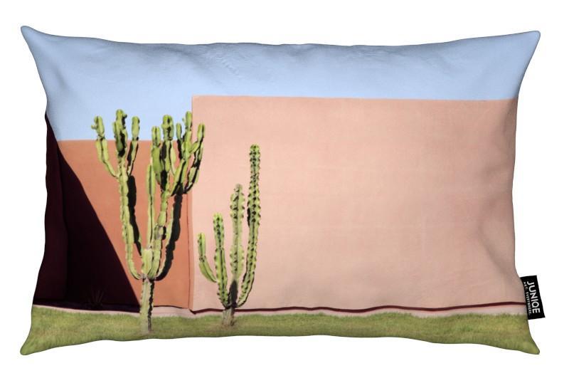 Architekturdetails, Kaktus, Cactus Brothers