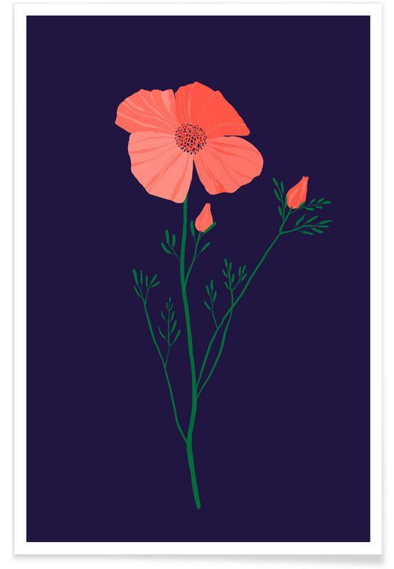 , Pressed Poppy Poster