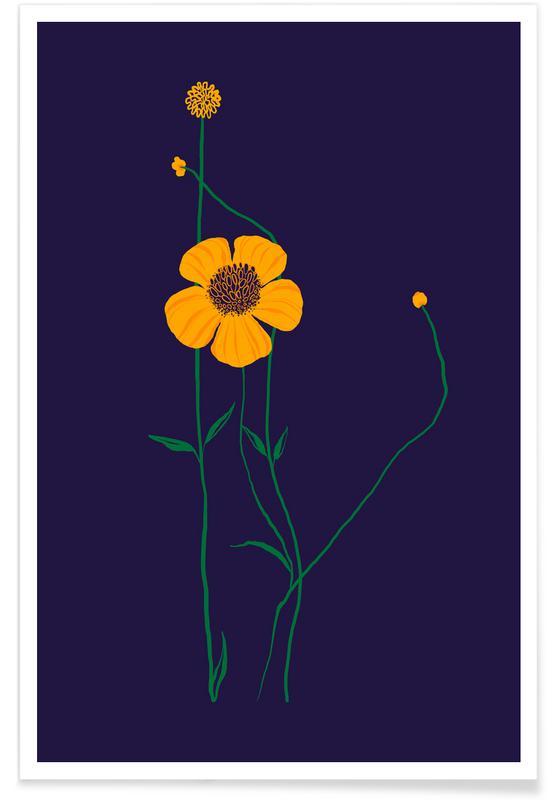 , Yellow Wildflower affiche