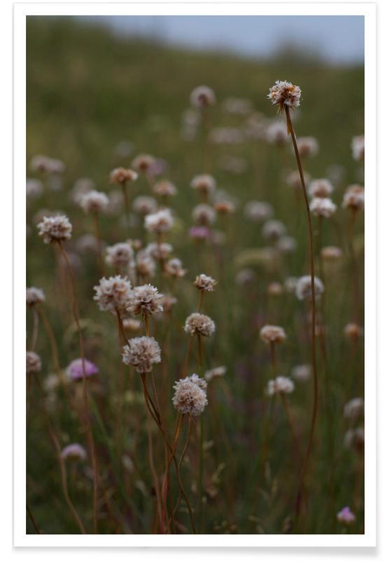 Leaves & Plants, Falster Poster