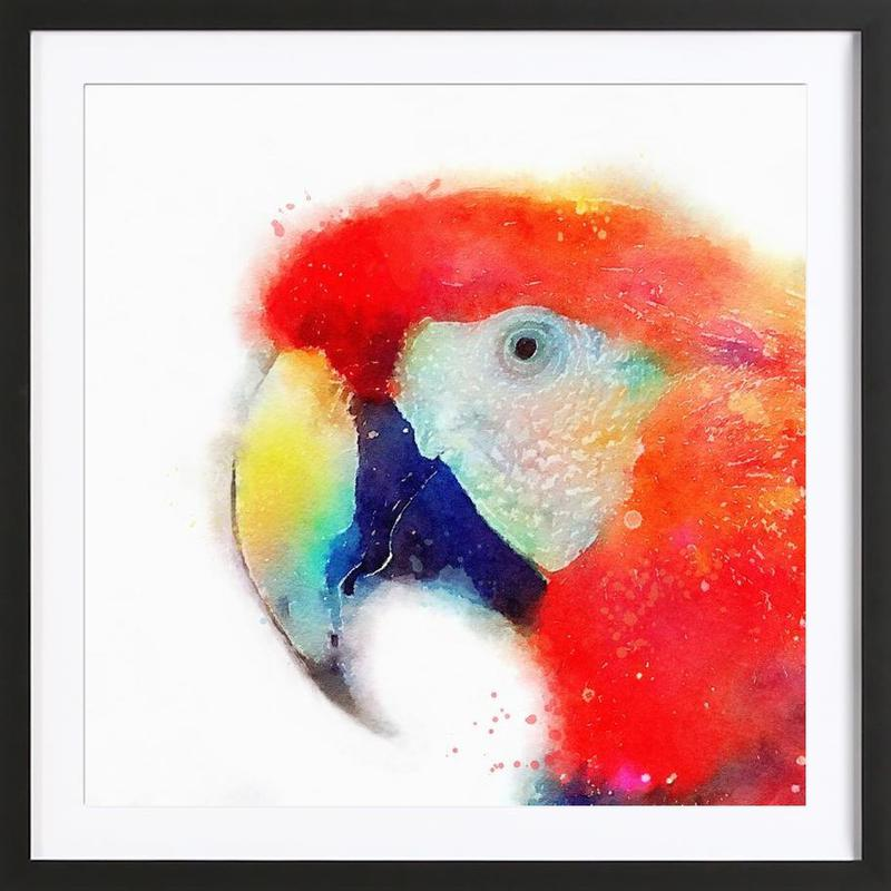 The Articulate Framed Print
