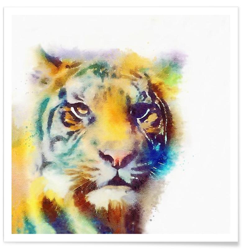 Tigres, The Elusive affiche