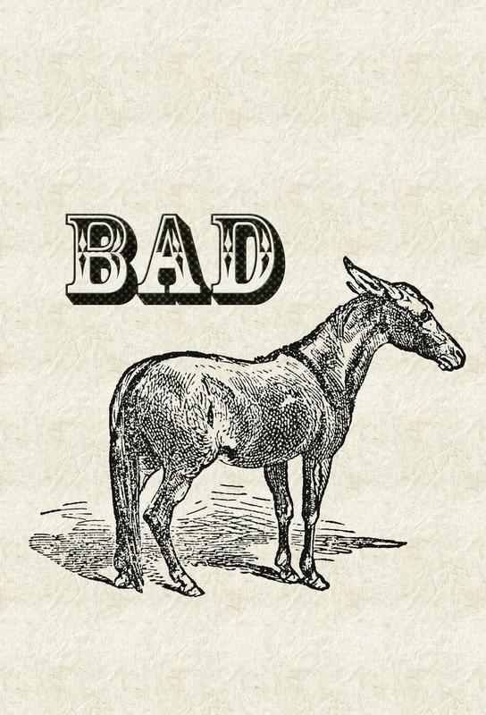 Bad Ass Aluminium Print
