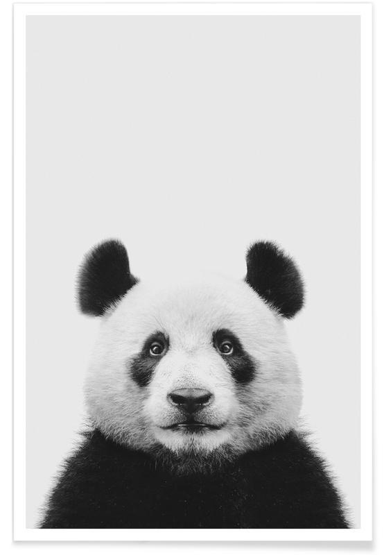 Børneværelse & kunst for børn, Sort & hvidt, Pandaer, Panda II Plakat