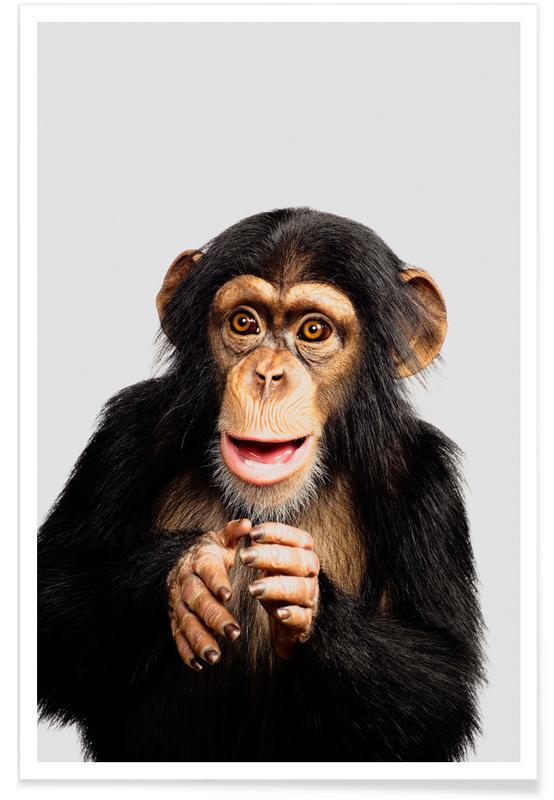 Singes, Art pour enfants, Chimpanzee affiche