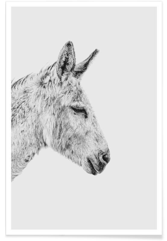 Kinderzimmer & Kunst für Kinder, Donkey II -Poster