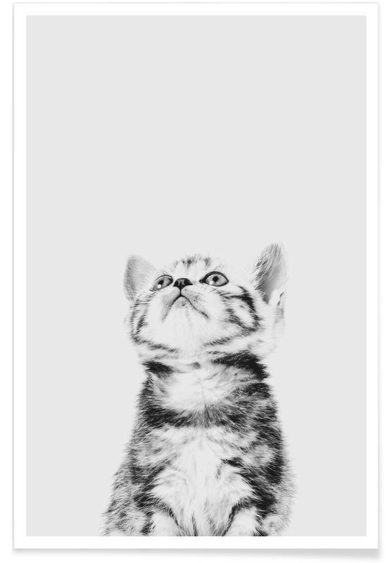 Chats, Art pour enfants, Kitten II affiche