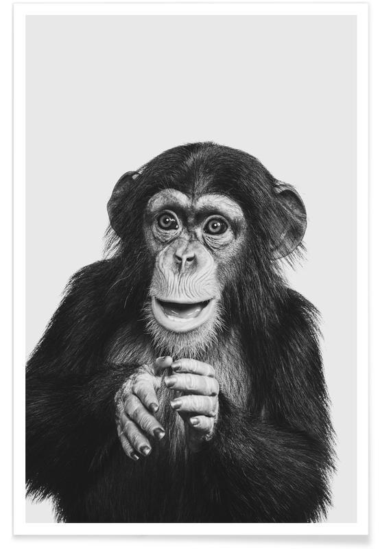 Singes, Art pour enfants, Chimpanzee II affiche