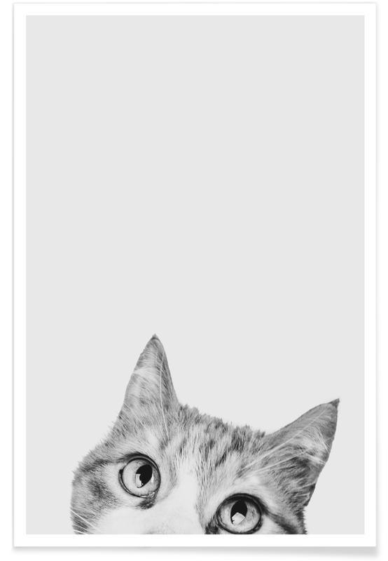 Chats, Art pour enfants, Cat II affiche