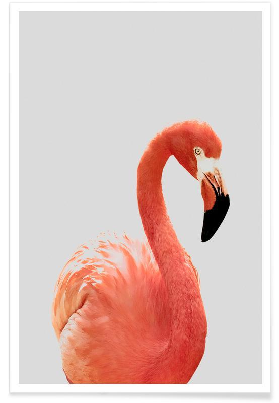 Kinderzimmer & Kunst für Kinder, Flamingo II -Poster