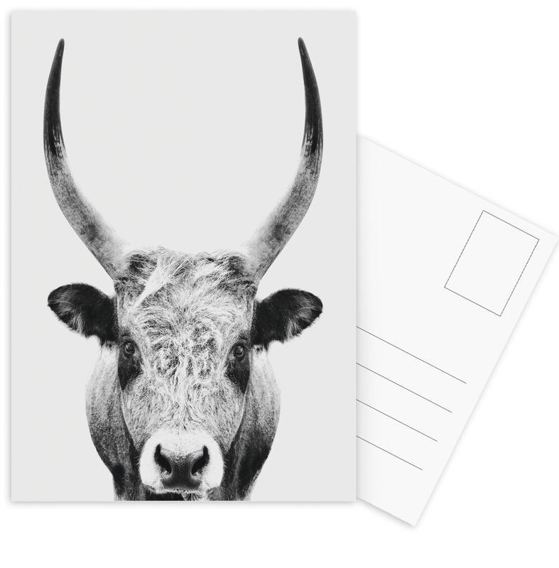 Kinderzimmer & Kunst für Kinder, Schwarz & Weiß, Kühe, Bull Classic -Postkartenset