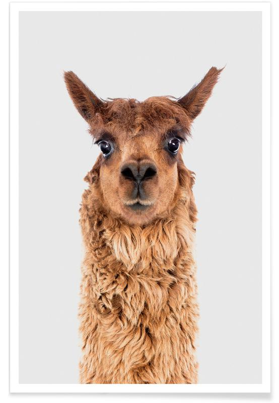 Nursery & Art for Kids, Alpaca II Poster