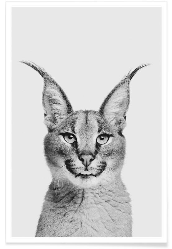 Sort & hvidt, Børneværelse & kunst for børn, Lynx Classic Plakat