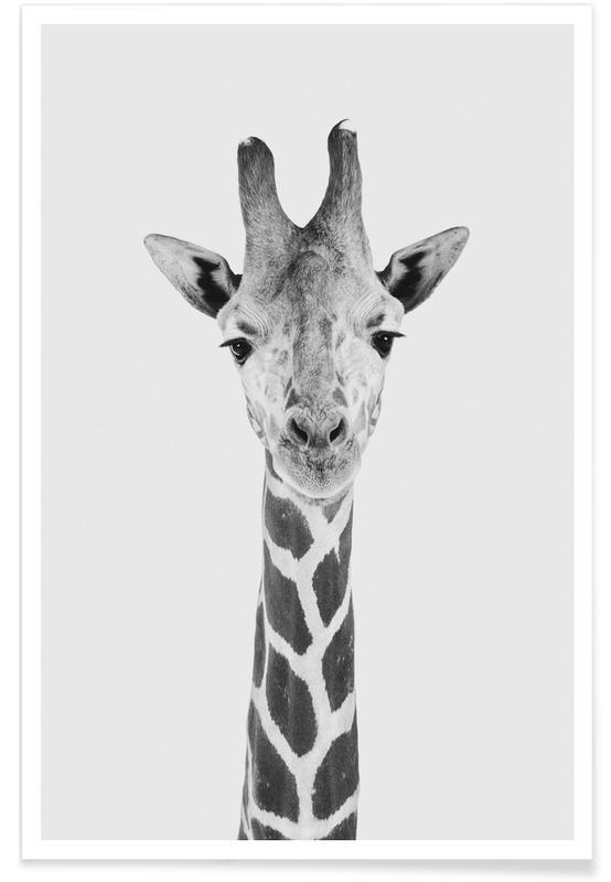 Girafes, Art pour enfants, Noir & blanc, Giraffe Classic affiche