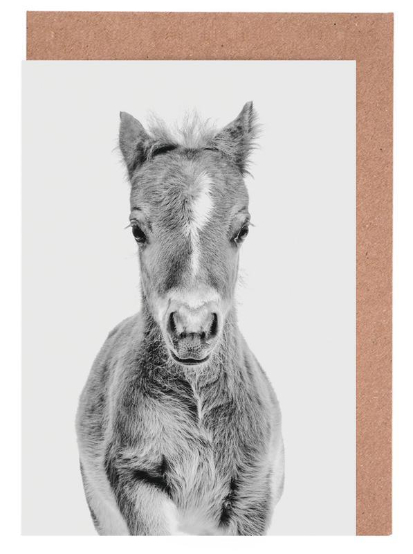 Pferde, Kinderzimmer & Kunst für Kinder, Schwarz & Weiß, Foal Classic -Grußkarten-Set