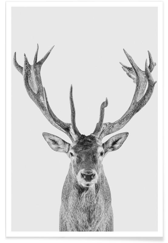 Herten, Zwart en wit, Kunst voor kinderen, Kerst, Reindeer Classic poster
