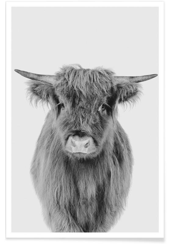 Art pour enfants, Vaches Highland, Vaches, Noir & blanc, Young Highland Cow Classic affiche