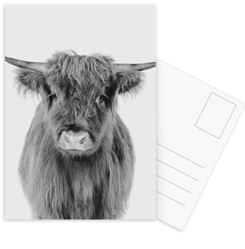 Cows, Black & White, Nursery & Art for Kids, Highland Cows, Young Highland Cow Classic Postcard Set