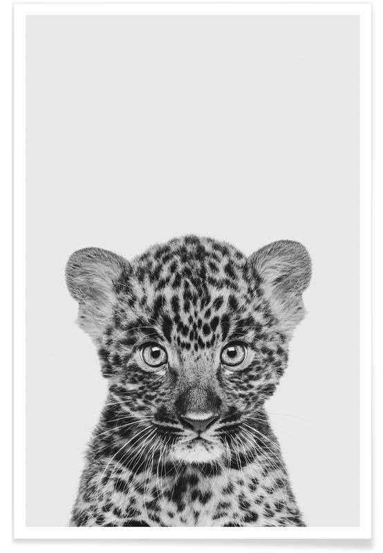 Schwarz & Weiß, Kinderzimmer & Kunst für Kinder, Leoparden, Leopard Classic -Poster
