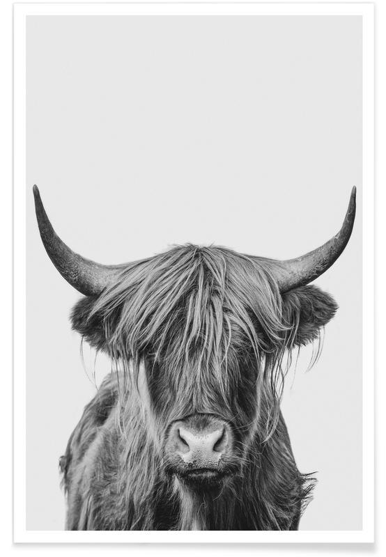 Zwart en wit, Kunst voor kinderen, Koeien, Schotse Hooglanders, Highland Cow Classic poster
