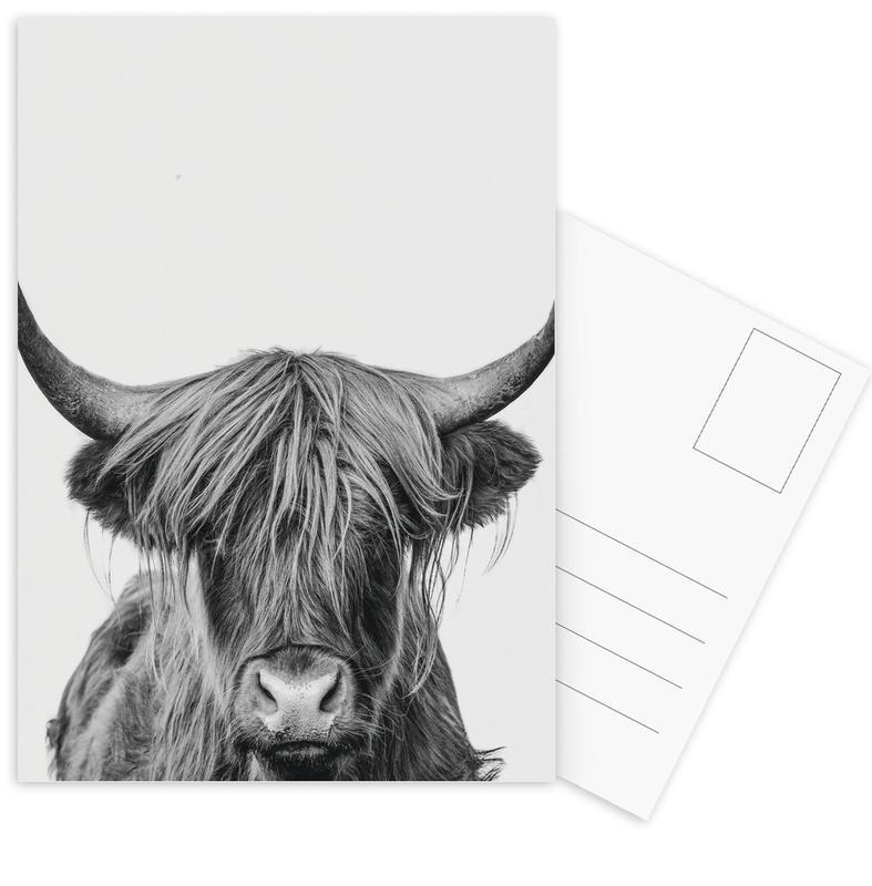 Cows, Black & White, Nursery & Art for Kids, Highland Cows, Highland Cow Classic Postcard Set