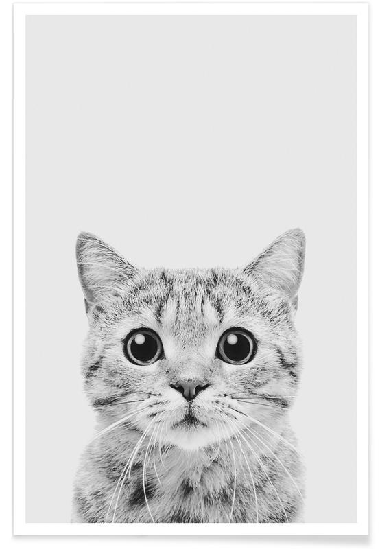 Nursery & Art for Kids, Cats, Black & White, Kitten Classic Poster