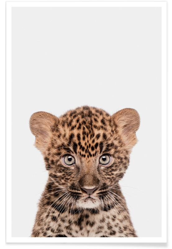Art pour enfants, Animaux de safari, Leopard affiche