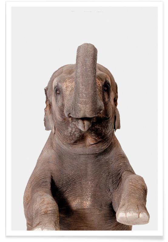 Art pour enfants, Animaux de safari, Elephant affiche