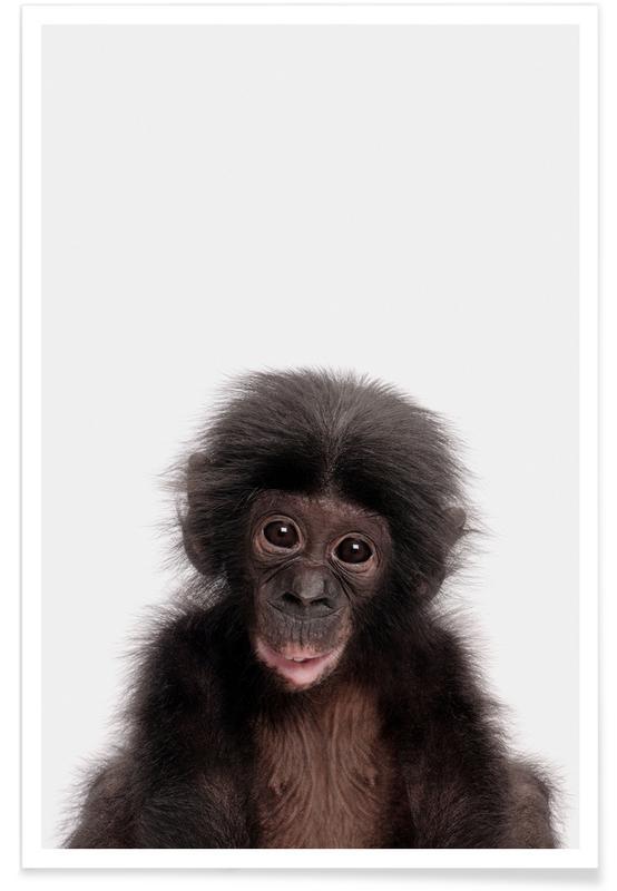 Singes, Art pour enfants, Bonobo affiche