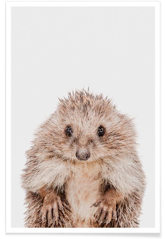 Børneværelse & kunst for børn, Hedgehog Plakat