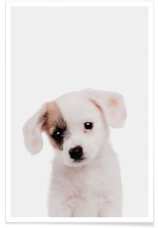 Chiens, Art pour enfants, Puppy affiche